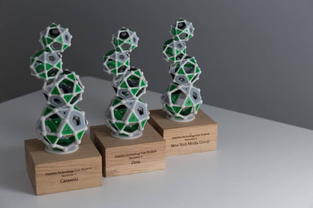 Catawiki won this year's Deloitte Technology Fast 50 (3D